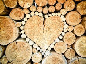 use wood combat climate change